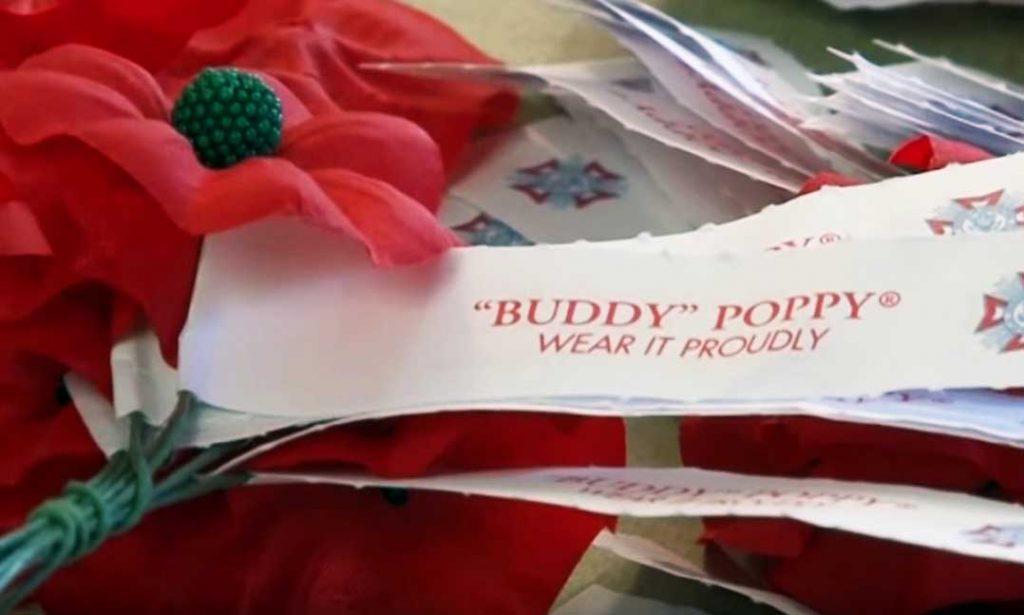 Buddy Poppy